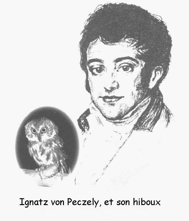 Ignatz - Brief History of Iridology